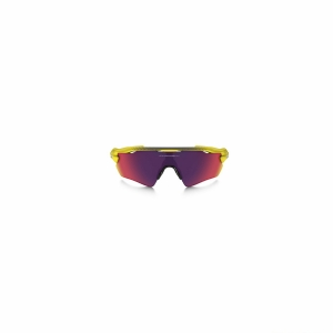 Oakley Radar EV Path Prizm TDF 920843